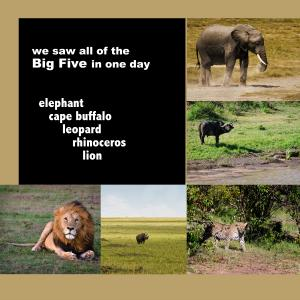 Photography Website and African Safari Slideshow on Vimeo